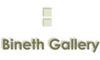 http://www.artcity.co.il/Gallery/Bineth